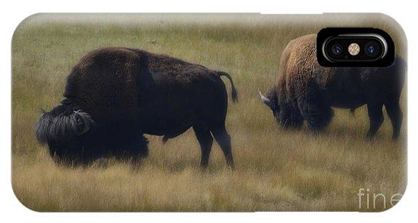 Wyoming Buffalo IPhone Case
