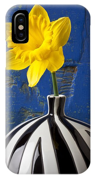 Yellow Trumpet iPhone Case - Yellow Daffodil In Striped Vase by Garry Gay