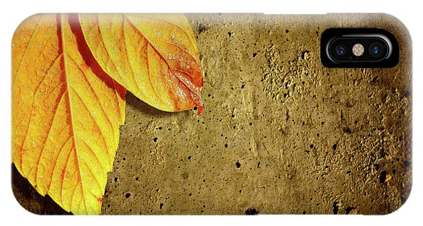 Mottled iPhone Case - Yellow Fall Leafs by Carlos Caetano