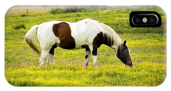 Yellow Fields Horse IPhone Case
