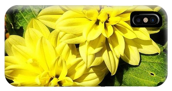 Beautiful iPhone Case - #yellow #flower #petals #closeup by Katie Williams