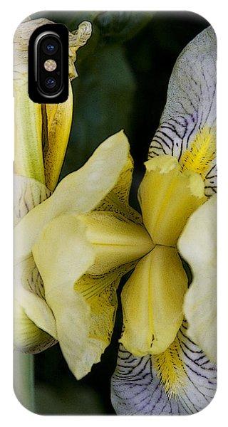 Yellow Iris Phone Case by Michael Friedman