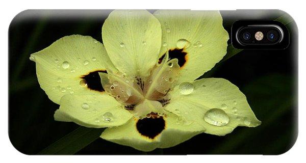 Yellow Iris With Rain Drops IPhone Case