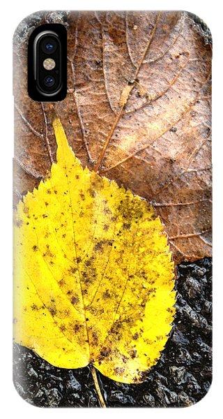 Yellow Leaf In Rain IPhone Case