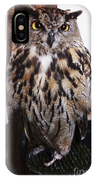 Yellow Owl Eyes IPhone Case
