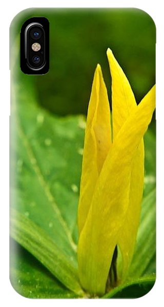 Crossville iPhone X Case - Yellow Trillium 1 by Douglas Barnett