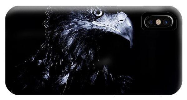 Young Eagle IPhone Case