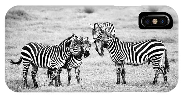 Zebras In Black And White IPhone Case