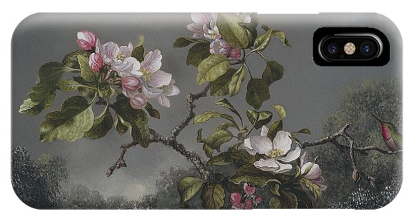 Humming Bird iPhone Case -  Apple Blossoms And Hummingbird by Martin Johnson Heade