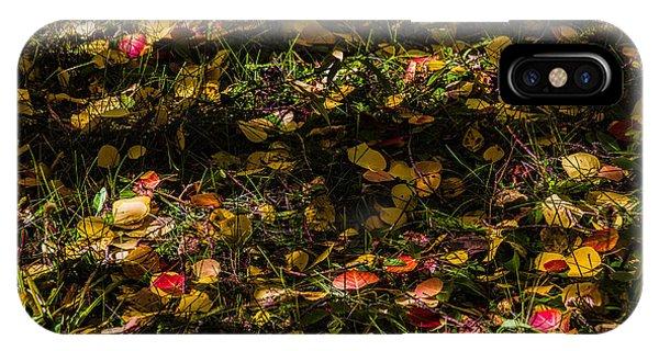 Autumn's Mosaic IPhone Case