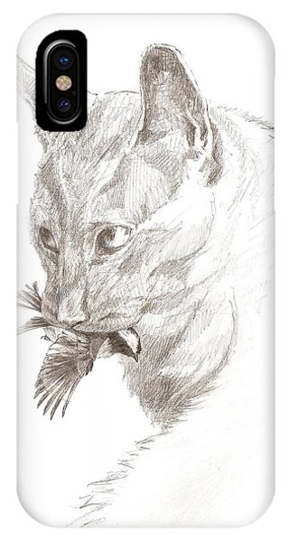 Cat And Chickadee IPhone Case