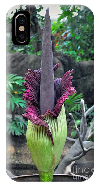 Corpse Flower IPhone Case