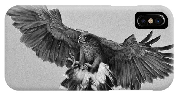 Da181 Harris's Hawk By Daniel Adams IPhone Case