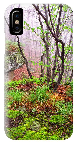 Foggy Spring Morning IPhone Case