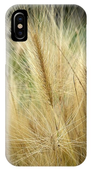 Foxtail Barley IPhone Case