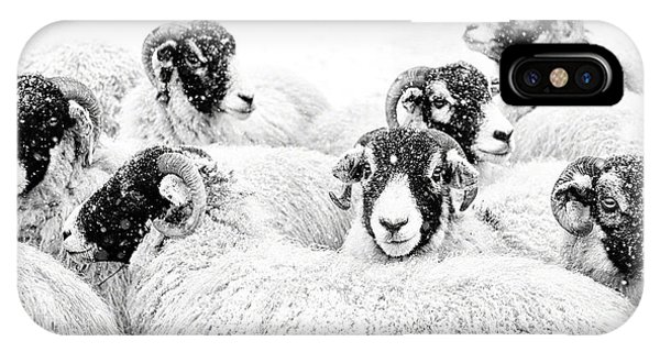 Farm iPhone Case -  In Winters Grip by Janet Burdon