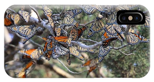 Monarch Mixed Cluster IPhone Case