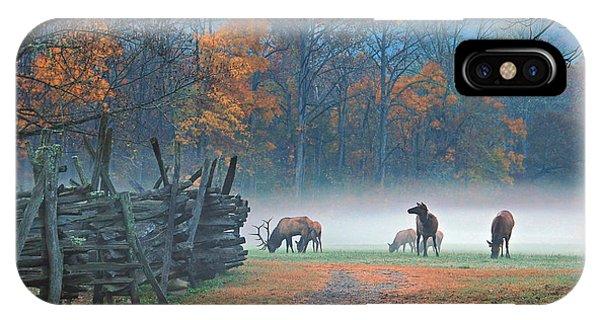 Oconaluftee Visitor Center Elk IPhone Case