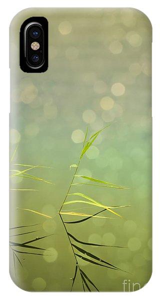 Salo iPhone Case -  Reflection by Veikko Suikkanen