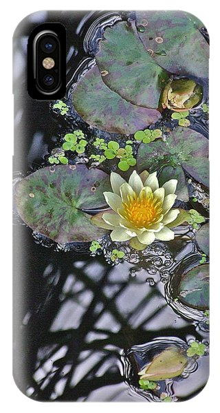 September White Water Lily IPhone Case