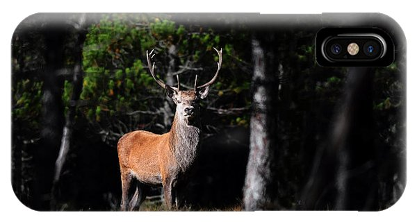 IPhone Case featuring the photograph  Stag In The Forest by Gavin Macrae