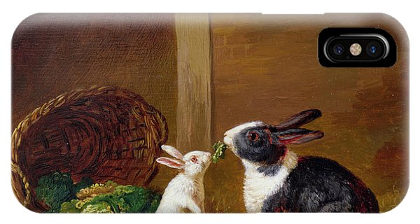 Pet iPhone Case -  Two Rabbits by H Baert