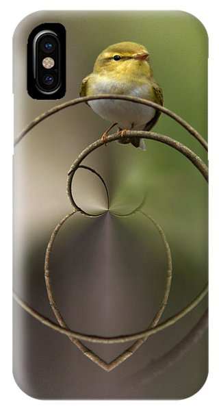 Wood Warbler IPhone Case