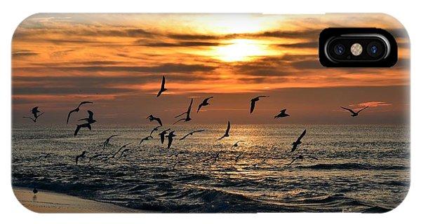 0221 Gang Of Gulls At Sunrise On Navarre Beach IPhone Case