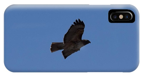 IPhone Case featuring the photograph Red Tail Hawk Male Tower Rd Denver Co 0898 by Margarethe Binkley