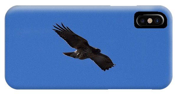 IPhone Case featuring the photograph Red Tail Hawk Male Tower Rd Denver by Margarethe Binkley
