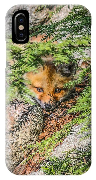 #0527 - Fox Kit IPhone Case