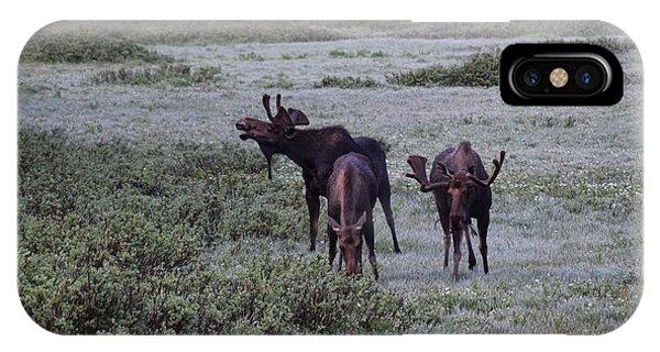 Moose Cameron Pass Co IPhone Case