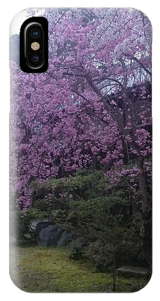 Shidarezakura Mean A Drooping Cherry Tree  IPhone Case