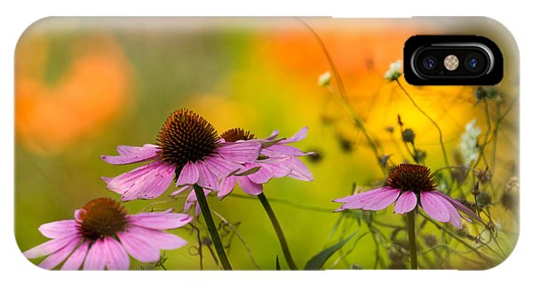 Golden Gardens iPhone Case - Coneflower Symphony by Mary Amerman