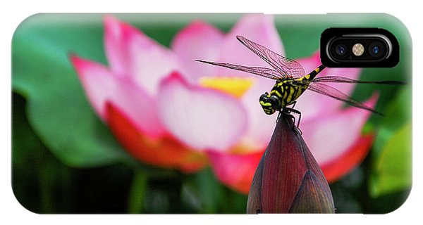 IPhone Case featuring the photograph A Dragonfly On Lotus Flower by Carl Ning