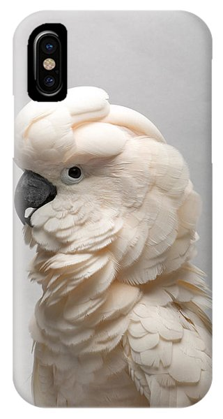 Cockatoo iPhone Case - A Salmon-crested Cockatoo by Joel Sartore