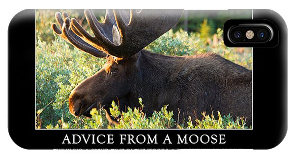 Advice From A Moose IPhone Case