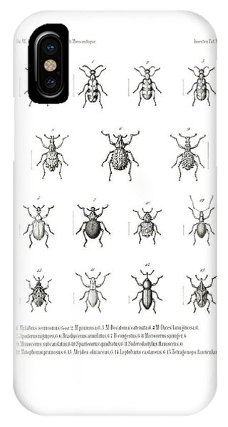 IPhone Case featuring the drawing African Beetles by Bernhard Wienker