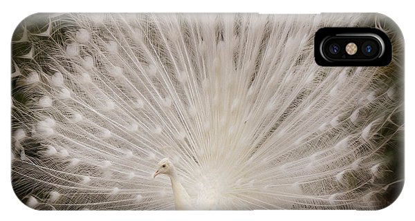 Albino Peacock  IPhone Case