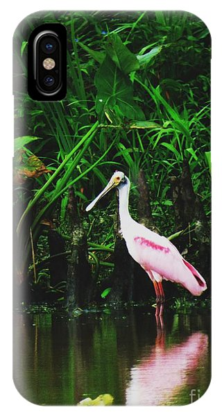 Along A River Road Phone Case by Deborah Chase