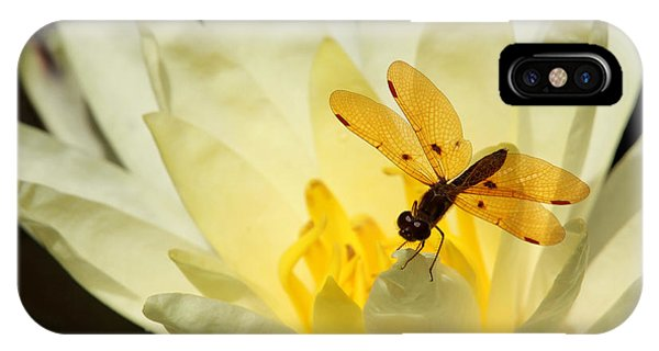 Amber Dragonfly Dancer 2 IPhone Case