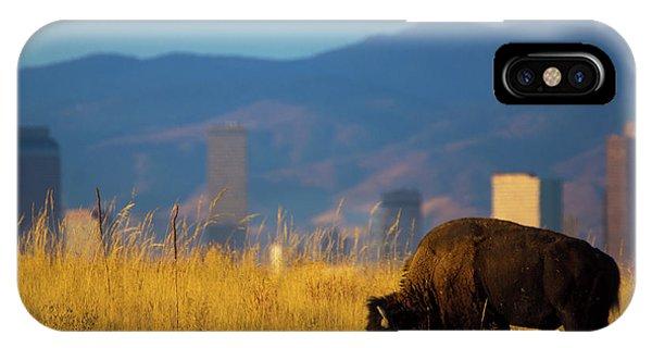 American Bison And Denver Skyline IPhone Case