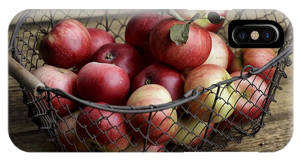 Ripe iPhone Case - Apples by Nailia Schwarz