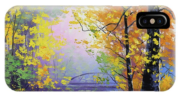Fall Scenes iPhone Case - Autumn Reflections by Graham Gercken