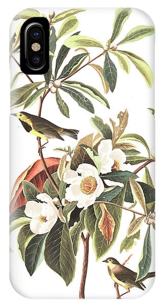 Bachman's Warbler  IPhone Case