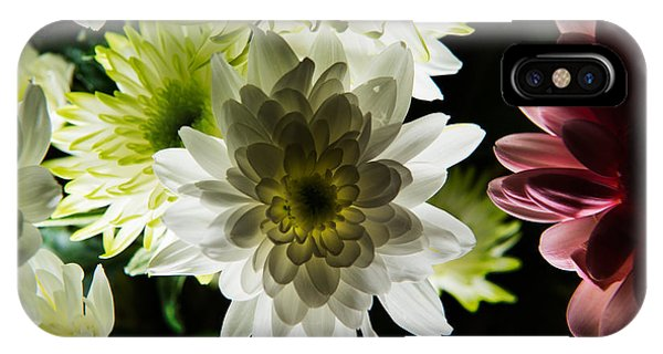 Backlit White Dahlia IPhone Case