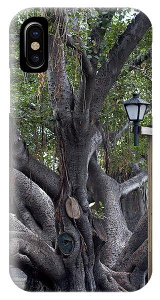 Banyan Tree, Maui IPhone Case