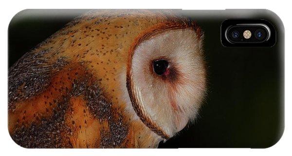 Barn Owl Profile IPhone Case
