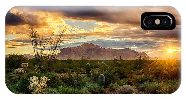 Beauty In The Desert IPhone Case