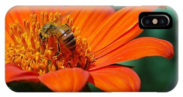 Bee-utiful IPhone Case